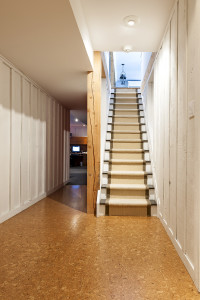 Stairway to finished basement in home interior with wood panelin