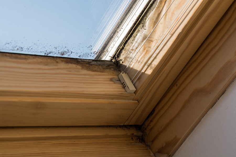 5 Reasons Your Skylight Could Be Leaking